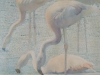 Triptych.oil paintings on canvas. 50x70.marine birds,Flamingo.Painted South Of France.